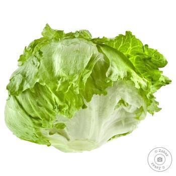 Salata Iceberg kg - cumpărați, prețuri pentru Metro - foto 1